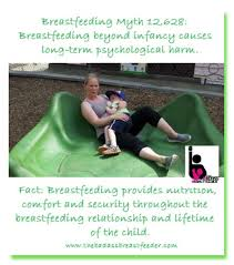 Breastfeeding Meme - facebook memes for sharing the badass breastfeeder