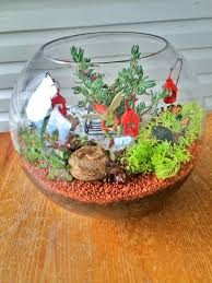 miniature terrarium fairy garden be a fun mum