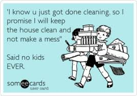 House Cleaning Memes - i know u just got done cleaning so i promise i will keep the