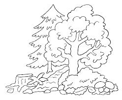 attractive paddington bear colouring pages 14 dibujo
