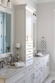 Bathroom Counter Ideas Storage Bathroom Counter Storage Tower In Conjunction With