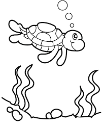 turtle swims water coloring colouring pages