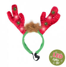 reindeer antlers headband zippy paws reindeer led antlers headband pet accessory
