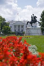 Washington Dc Map Of Attractions by Best 25 Washington Dc Sites Ideas On Pinterest Washing Dc Trip