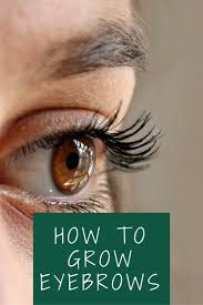 how to grow eyebrows naturally home remedies for thicker eyebrows
