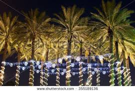 christmas in florida stock images royalty free images u0026 vectors