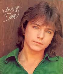 70 s style shag haircut pictures david cassidy hairstyles classic men s shag haircuts cool