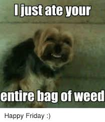 Happy Friday Memes - i just ate your entire bag of weed happy friday friday meme on me me