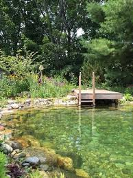 Backyard Pool Images by Best 10 Natural Pools Ideas On Pinterest Natural Backyard Pools