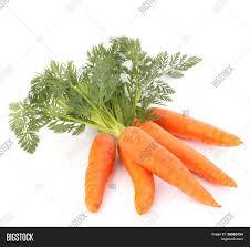 carrot vegetable leaves isolated on image u0026 photo bigstock
