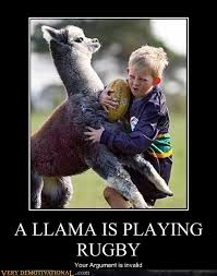 Meme Your Argument Is Invalid - a llama is playing rugby very demotivational demotivational