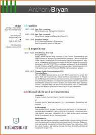 top resume sles 2016 12 the best resume templates for 2016 budget template letter