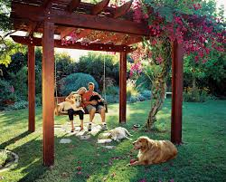 backyard ideas for dogs how to create a dog friendly garden sunset magazine