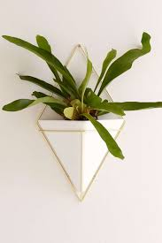stylish indoor garden planters and vessels