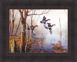 Ducks Unlimited Home Decor Amazon Com Backwater By Jim Hansel 17x21 Wood Ducks Framed Art