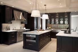 Delighful Dark Cabinets Kitchen My Soooo Excited E Throughout - Dark kitchen cabinets