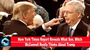 new york times report reveals new york times report reveals what sen mitch mcconnell really