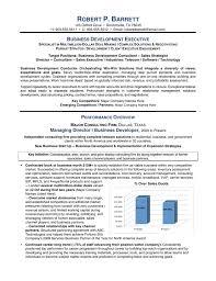 executive resume format template executive resume template retail resume template executive