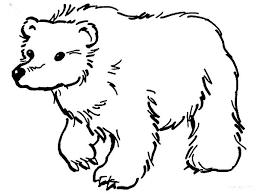 brown bear coloring bestcameronhighlandsapartment