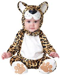 in character cute infant baby koala bear animal halloween costume