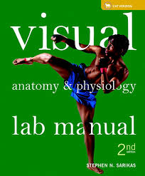 Essentials Of Human Anatomy And Physiology Notes Website For Just Anatomy Learn Anatomy Learn