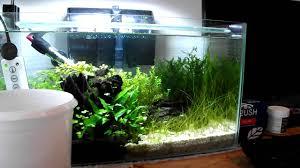 Aquascaping Tools Small Planted Aquarium Rescape Using Aquariumplantfood Co Uk