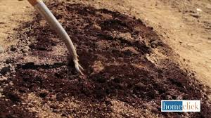 how to prepare your garden for the spring and summer youtube
