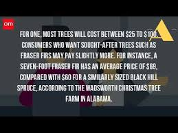 how much is a real christmas tree youtube