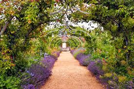 flowers and gardens in east england eastofenglandnafas co uk