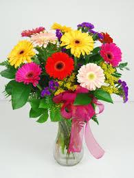 Gerbera Daisies Gerbera Daisies Vase Florist In O U0027fallon Il Larosa U0027s Flowers