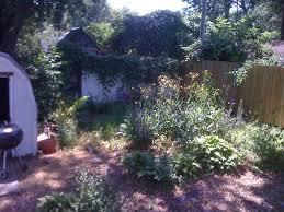 i phone pics 9 10 10 534 advantage lawn care