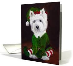 28 best westie images on cards pet dogs and