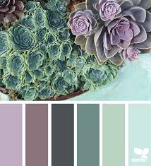 chilled hues colour images color palettes