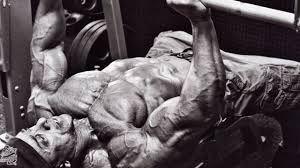 Max Bench Workout Big Bench Program For Strength And Size T Nation