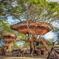tree house nusa dua bali u201d bali pinterest tree houses house