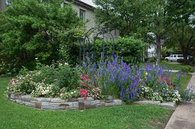 texas perennial garden u2013 top ten summer perennials u2013 lee ann