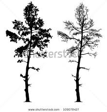 vector drawing tree detailed vector stock vector 109078427