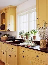 best 20 yellow kitchen cabinets best of yellow kitchen units home interior design photos gallery