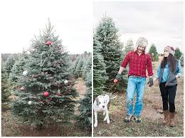 candace u0026 david old homestead tree farm pennsylvania engagement