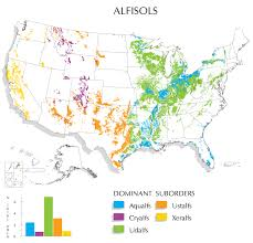 A Picture Of The Map Of The United States by Alfisols Map Nrcs Soils