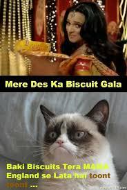 Mere Cat Meme - funny picture mere des ka biscuit gala funny pak101 com