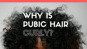 why is pubic hair curly does it serve any purpose youtube