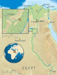 Map Of Egypt In Africa by Mummy Dna Shows That The Ancients Don U0027t Have Much In Common With