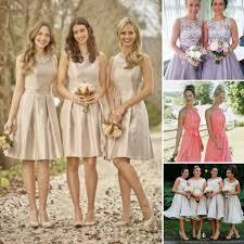 blush colored bridesmaid dress top 5 of choice of bridesmaid dress in color and