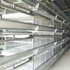 heat l for bird aviary sale bird cage wire mesh aviary live chickens buy live