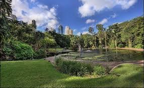 City Botanic Gardens Brisbane City Botanic Gardens Search Results Equality Weddings