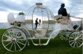 bianchi carrozze cavalli bianchi per matrimonio