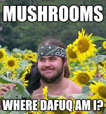 Hippie Memes - confused hippie memes quickmeme
