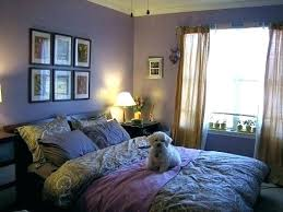 Room Decor For Guys College Bedroom Ideas For Guys Apartment Ideas For College Guys