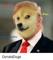 Funny Doge Memes - muslim many wow donalddoge doge meme on me me